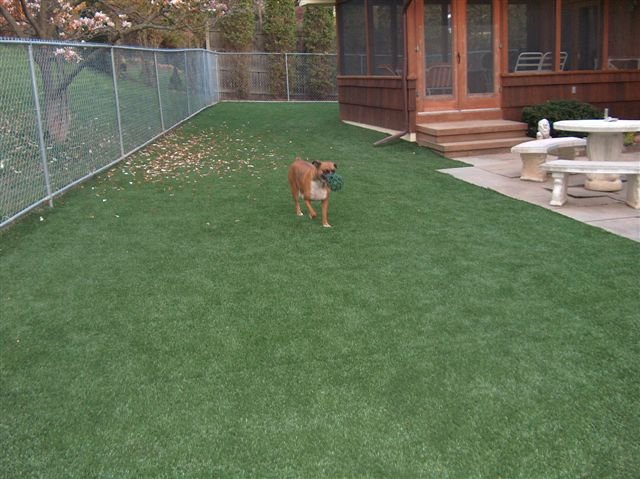 lawn-and-landscape-synthetic-turf-10