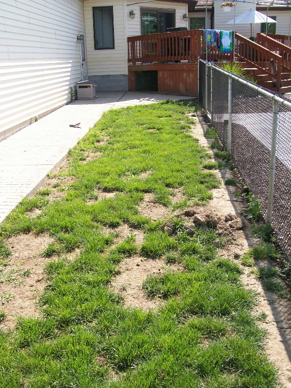 lawn-and-landscape-synthetic-turf-26