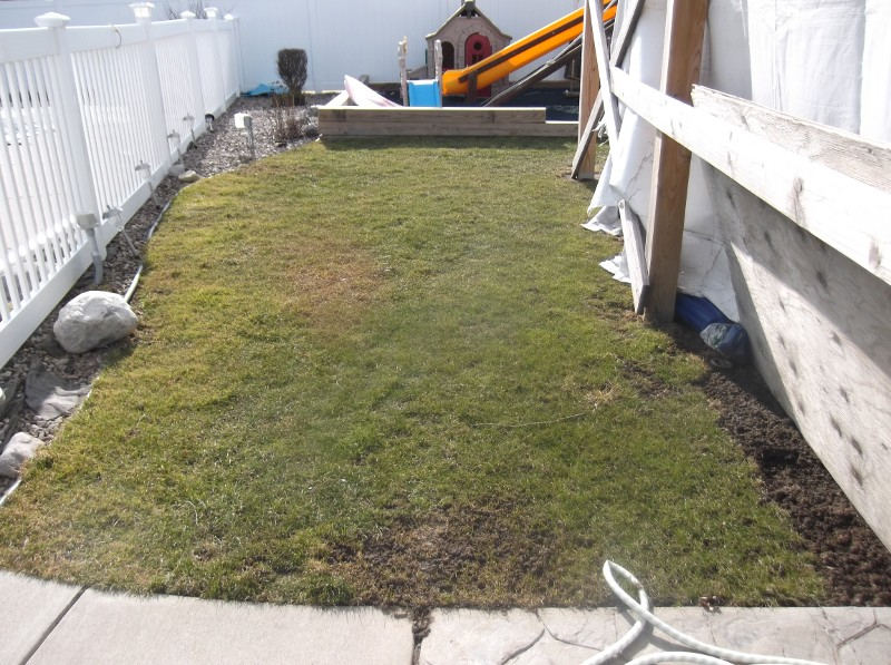 lawn-and-landscape-synthetic-turf-35